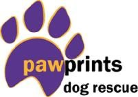 "Mrs D (RUGBY) supporting <a href=""support/pawprints-dog-rescue"">Pawprints Dog Rescue</a> matched 2 numbers and won 3 extra tickets"